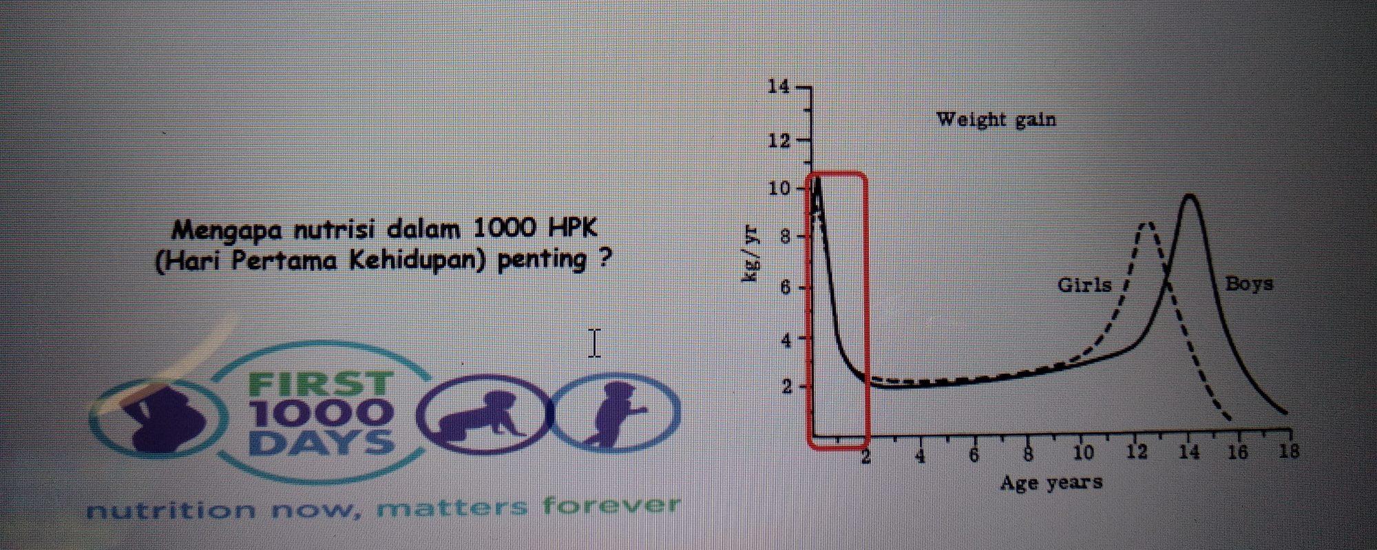 Pentingnya 1000 HPK, Materi Dr. Damayanti Rusdi