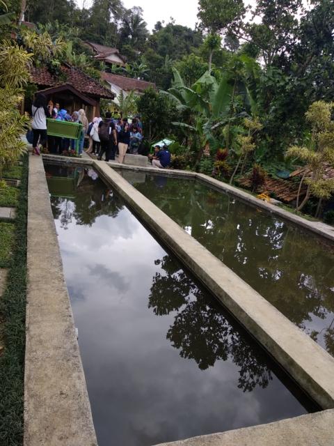 Contoh water pond di desa Cisaat