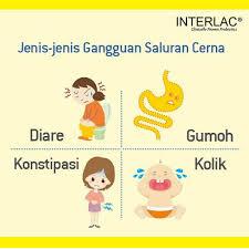 Kegunaan Interlac
