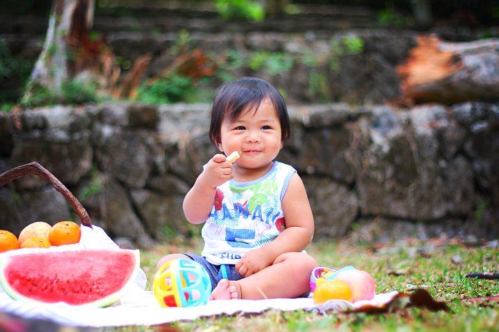 picnic-2659208__480